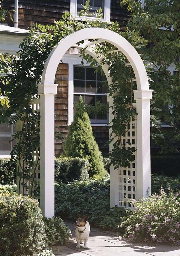 503518 - Arch-Topped Arbor